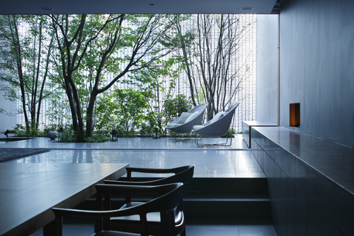 Optical Glass House_NAParchitects_08