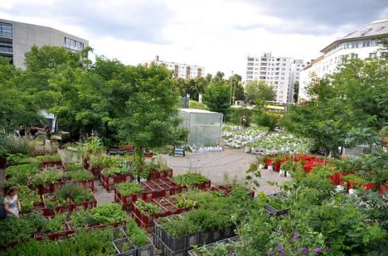 prinzessinnengarten_02