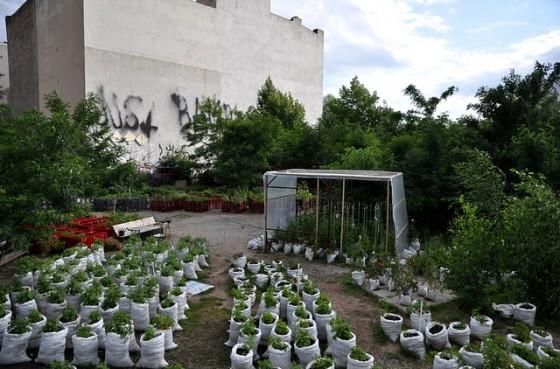 prinzessinnengarten_03