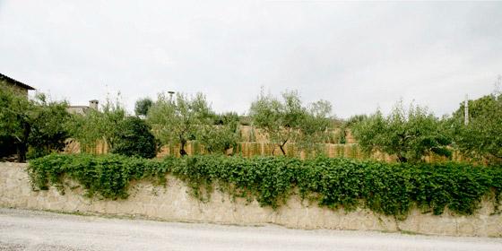 jardin_ecologico_Sant_Cristofol_dataAE_01