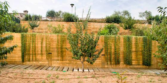 jardin_ecologico_Sant_Cristofol_dataAE_04