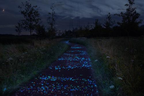 Glowing_Van_Gogh_Fietspad_Roosegaarde_500