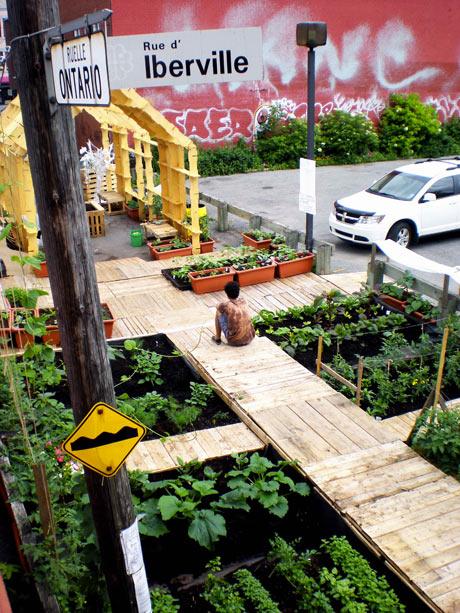jardinsurrue5