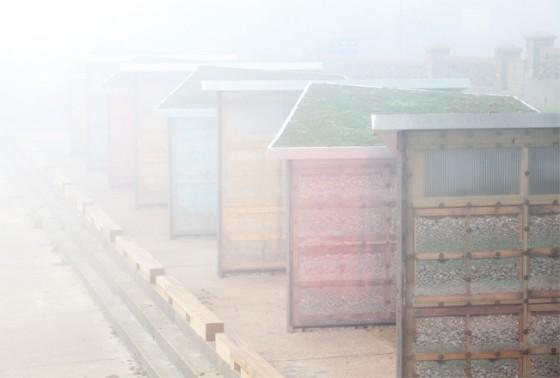 Misty-Photo-094