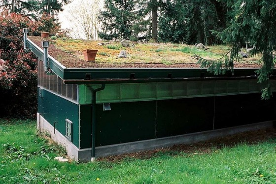 HarrisonArchitects_GreenRoof_04