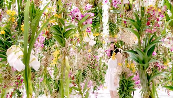 Floating-Flower-Garden_02