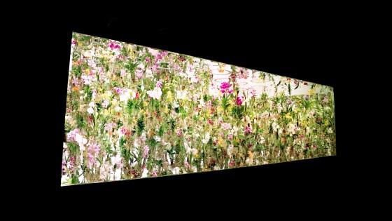 Floating-Flower-Garden_13
