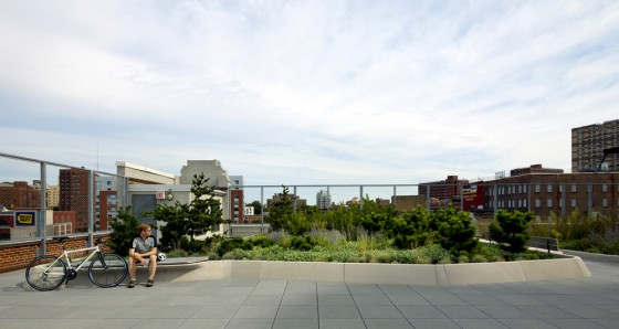 Printing Press Rooftop Park Green Roof
