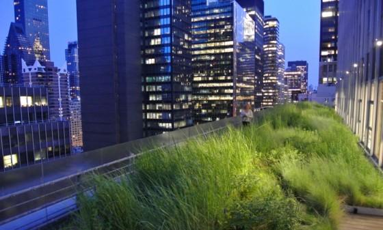 HMWhite_Midtown Manhattan Sky Garden_01
