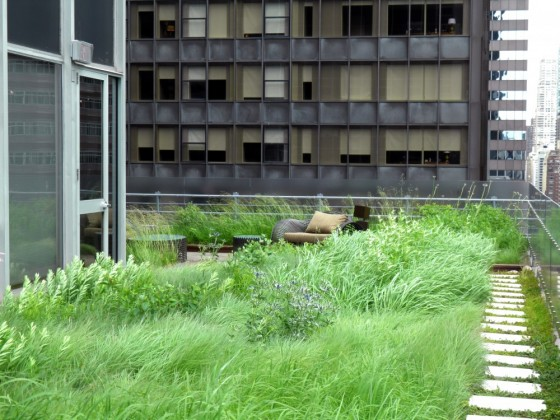 HMWhite_Midtown Manhattan Sky Garden_03