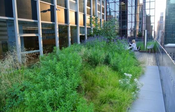 HMWhite_Midtown Manhattan Sky Garden_04