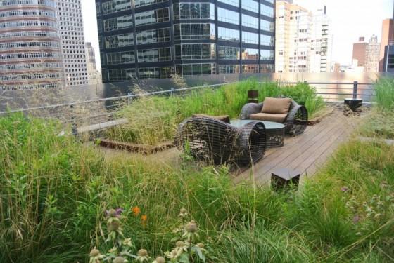HMWhite_Midtown Manhattan Sky Garden_06