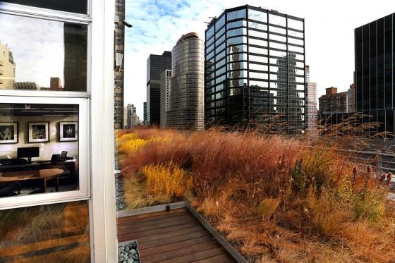 HMWhite_Midtown Manhattan Sky Garden_08
