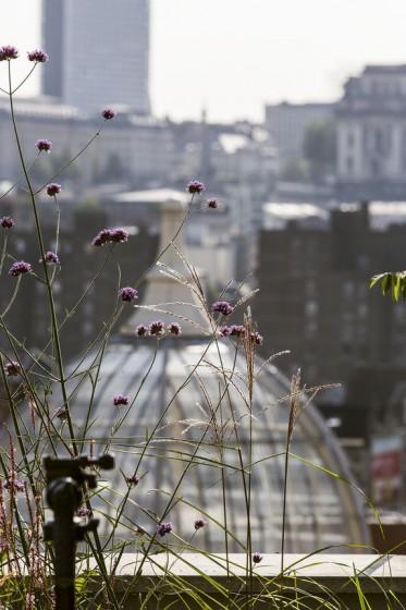Bart_Pieter_Rooftop_04