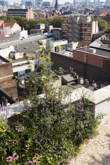 Bart_Pieter_Rooftop_08