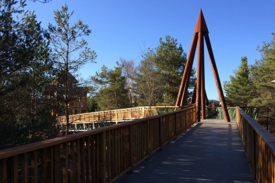 Linearscape_WildCenter_04