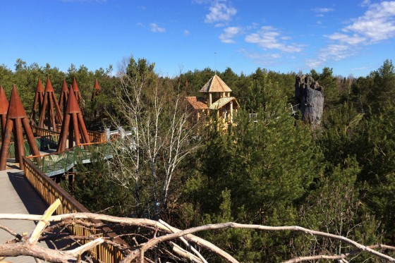 Linearscape_WildCenter_06