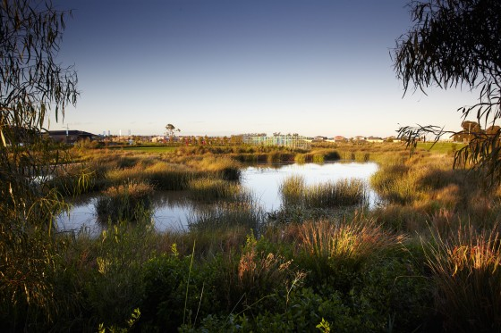 Edenbrook-Toomuc Creek Entry Reserve